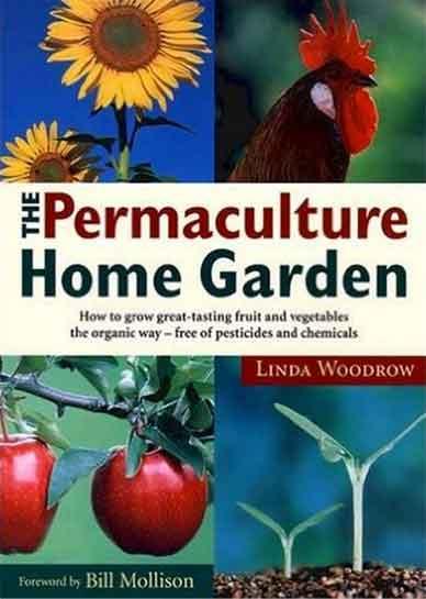 woodrow-book