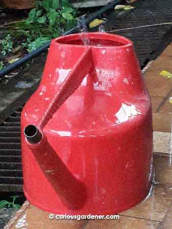 Harvesting rainwater in a watering can makes it easy to transfer the water to other containers!